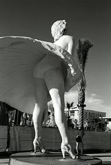 Forever Marilyn (3)