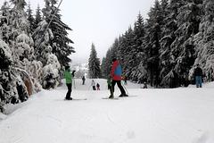 Wintermärchen - vintra fabelo - Altenberg/Sachsen