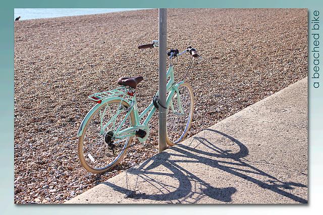 a beached bike - Seaford - 10.9.2015