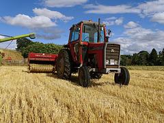 Massey Ferguson 590 & Claas combine harvester.