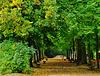23. September 2015 - Herbstanfang - Beginning of Autumn - Équinoxe de l'automne