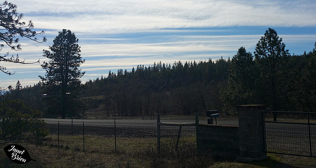 cloudy-skies-at-gate