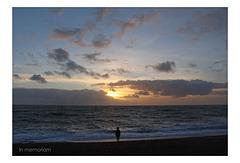 In memoriam - Seaford Bay - 9.12.2015