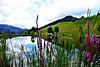 Bichlersee (Berggasthof)