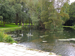 The pond at Hornsbury Mill.