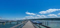 bei Horn am Untersee - Bodensee (© Buelipix)
