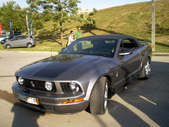 Ford Mustang Shelby 2009.