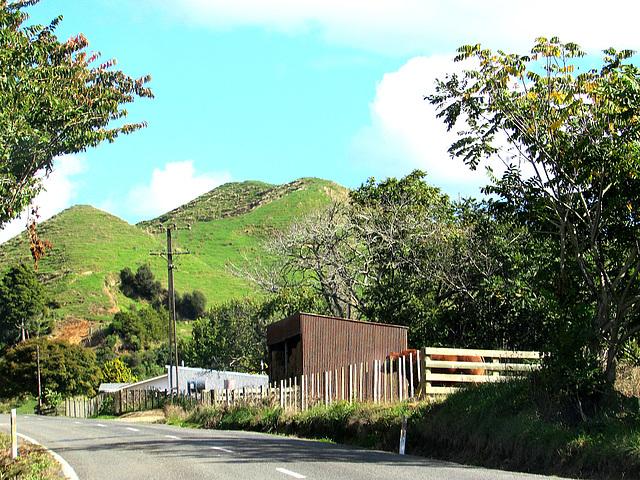 Highway Fence Line