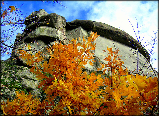 El Cancho Largo in autumn, with colourful oak.