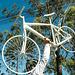 Bicicleta Fantasma em Memória a Róger Bitencourt [17]