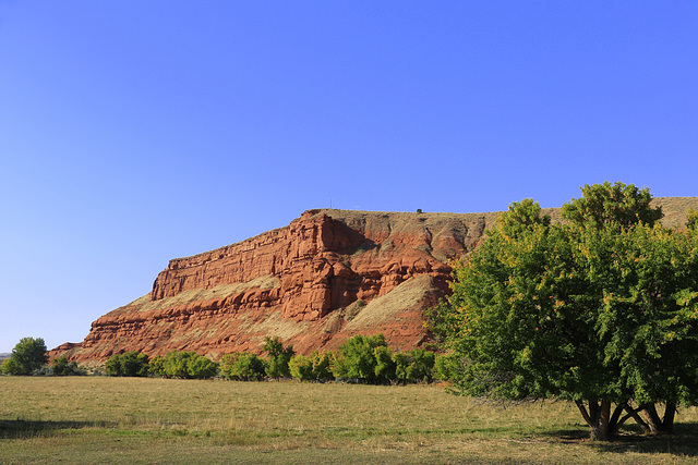 Signal Cliff