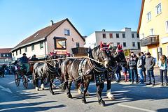 Pferdemarkt in Gaildorf 2017