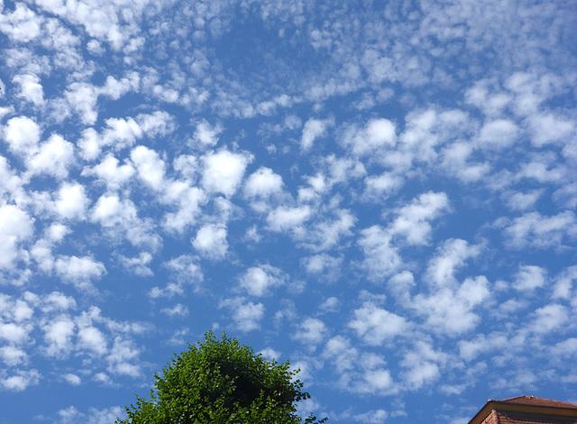 Sommerwolken - somernuboj