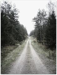 Versorgungsweg
