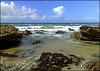 Basset Cove.    H. A. N. W. E. everyone!