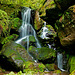 Lichtenhainer Wasserfall - The Lichtenhain waterfall - PiP