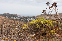 Haría im Tal der 1000 Palmen - Haría in the Valley of 1000 Palms (PiP)