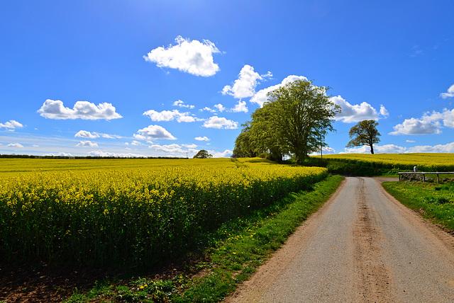 Knightley Farm, Gnosall