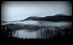 Brouillards de janvier