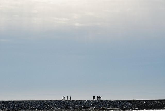 The 6km Walk - Iona Beach Richmond