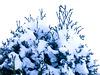 Trop de neige au Québec !
