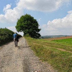 Rising path towards Glasshampton Monastery above Hill Top Farm