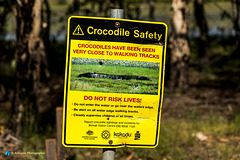 Watch out: Crocodile Safety