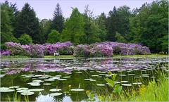 Gardens of Castle 'Het Oude Loo'...