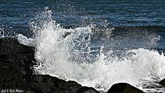 West Quoddy Rocks & Surf (1)