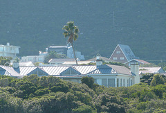 Hermanus holiday houses