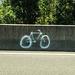 Bicicleta Fantasma em Memória a Róger Bitencourt [28]