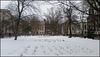 snow in Queen Square garden