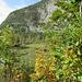 Seewiese bei Altaussee im steirischen Salzkammergut