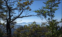 El Montseny des de prop del cim del Puigsacalm