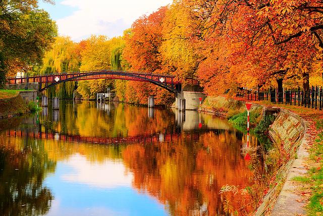 Herbstlied ... ♫ ♪ ♪ ♫