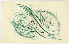 Charles Smith—Ornamental Pensmanship on a Calling Card