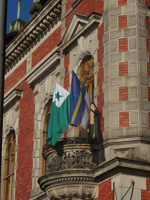 Esperanto-flago  sur nia muzeo