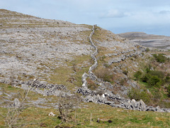 Stone wall on the Burren, County Clare, Ireland.