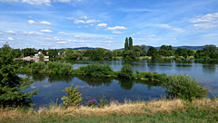 Neckar bei Ladenburg