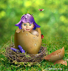 Sorry I couldn't wait till Easter. You may not be here :-( So wishing you a Happy New Year.