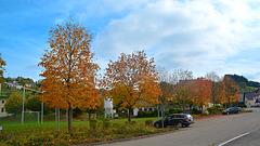 Schöne Farben des Herbstes