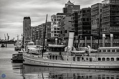 """Steamship """"Schaarhörn"""""""