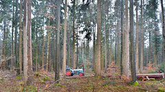Waldarbeit mit alten Schlepper
