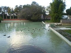 Pond of Montes Claros Garden.