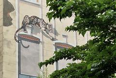 Panthère de Lyon