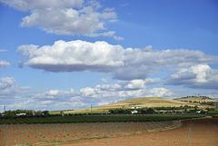 Campos de Castilla- La Mancha (ver sobre fondo negro)
