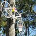 Bicicleta Fantasma Róger [05]