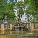 HFF - Delphinbrunnen auf der Brühlschen Terrasse