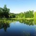 Rudolfův rybník 2