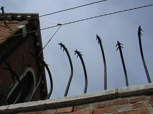 Venice spikes